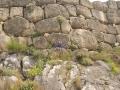 Mycenae-1-www.eternalgreece.com-by-E-Cauchi-0008