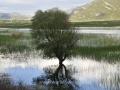 Lake-Stymphalia-www.eternalgreece.com-by-E-Cauchi-27