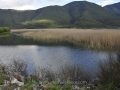 Lake-Stymphalia-www.eternalgreece.com-by-E-Cauchi-29