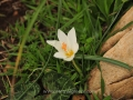 Mani-Peloponnese-1-www.eternalgreece.com-by-E-Cauchi-0186