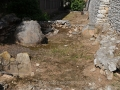 Ancient-Lerna-1-www.eternalgreece.com-by-E-Cauchi-0024